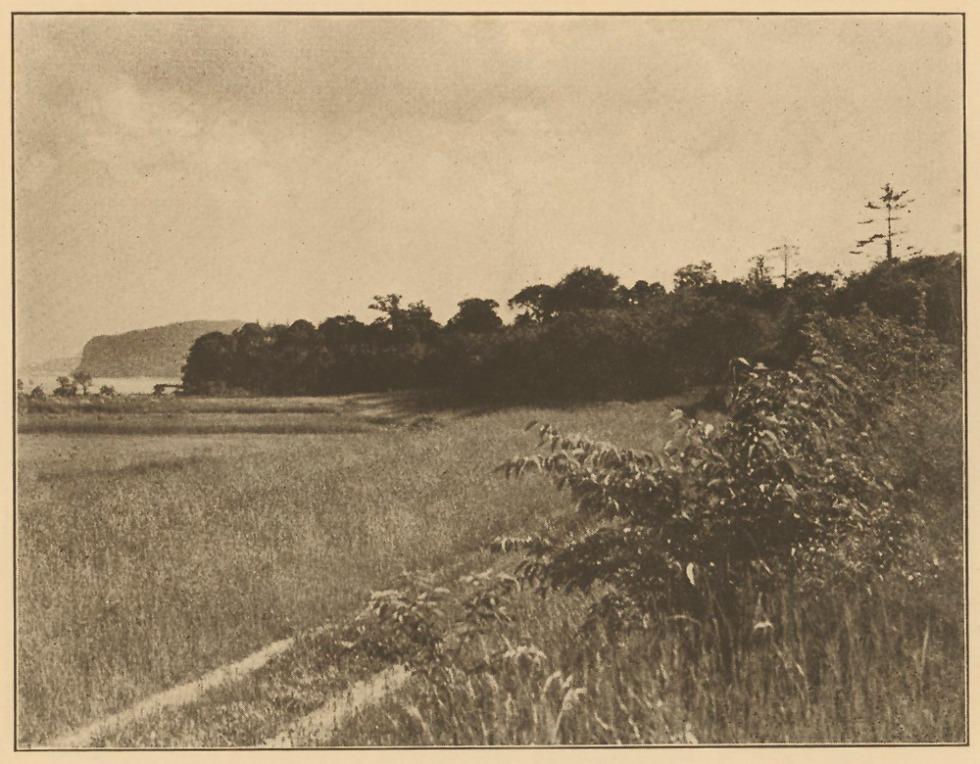 Croton-point-1924-06