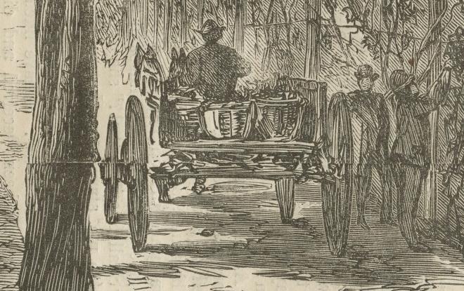 Harpers detail man in cart
