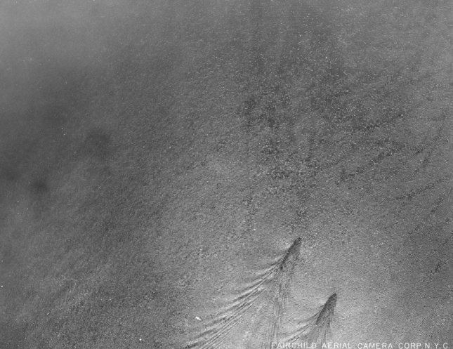 An aerial photograph, taken by a Manhattan map-making firm June 11, 1924, near Croton Point, purports to document two submarines (possibly rumrunners), each about 250 feet long and 600 feet apart, below the surface.