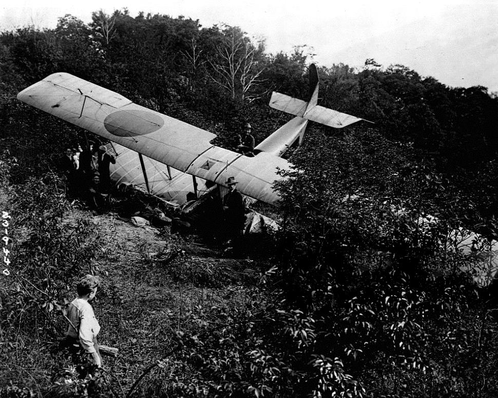 Crashed rum plane